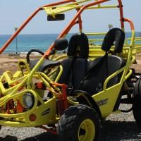 Hisun Buggy 250cc